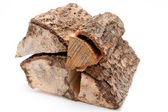 Stack of firewood isolated on white background — Stok fotoğraf