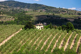 Toscana, italia — Foto de Stock
