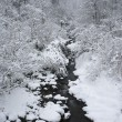 Brook with snow — Stock Photo