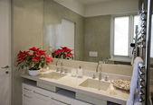 Tabel- en dishfurnishing van bath — Stockfoto