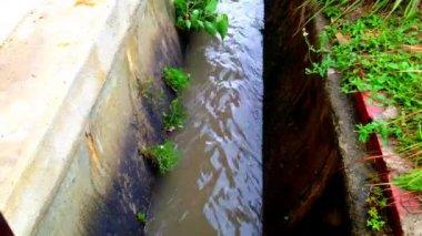 Timelaps vattennivån i avloppet när regn — Stockvideo