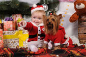 Little girl and dog in Christmas — Stock Photo