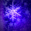 Winter snowflake — Stock Photo