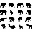 Stock Vector: Elephant silhouette vector set