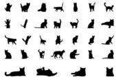 Silhouette cat vector — Stock Vector