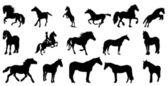 Horse silhouette vector — Stock Vector