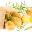 Fresh ripe potatoes and rosemary with burlap sack and knife - Stock Photo