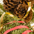 Christmas decoration of fur-tree and cones — Stock Photo