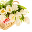 A bunch of beautiful white tulips in the basket isolated on whit — Stock Photo #18906187