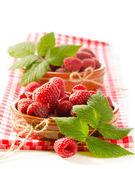 Frambuesa fresca — Foto de Stock