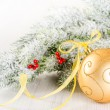 Christmas composition of fir--tree and golden bauble — Stock Photo #36792479