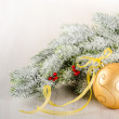 Christmas composition of fir--tree and golden bauble  — Stock Photo