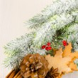 Christmas concept composition with fir tree, pine cone, cookies — Stock Photo