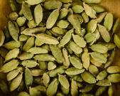 Green cardamom pods background — Stock Photo
