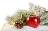 Christmas concept background with fir tree, apple, spices — Stock Photo