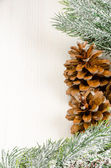 Christmas Fir Tree Border with Cones — Stock Photo