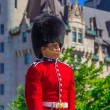 Ceremonial Guard — Stock Photo