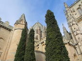 Cathedral with trees. — Stock Photo