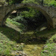 Roman bridge. — Stock Photo