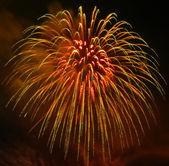 Fireworks. — Stockfoto
