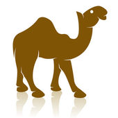 Vector image of an camel — ストックベクタ