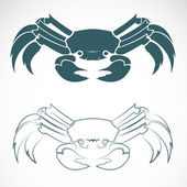 Vector image of an crab — Vector de stock