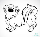 Vector image of an Dog (Pekingese) — Stock Vector