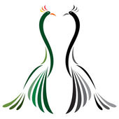 Vector image of peacock — ストックベクタ