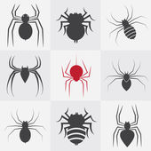 Set of vector spider icons — Stock Vector