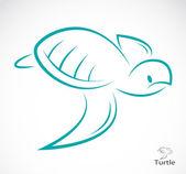 Bir kaplumbağa vektör görüntü — Stok Vektör