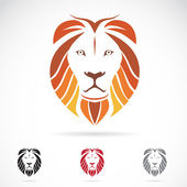 Vector image of an lion head — Stock Vector