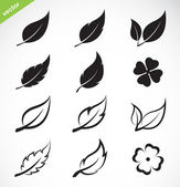 Vector leaves icon set  — Stock Vector