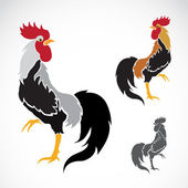 Vector image of an cock  — Stock Vector