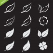 Vector leaves icon set — Stock Vector #45255853