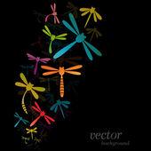 Dragonfly design on black background  — Vector de stock
