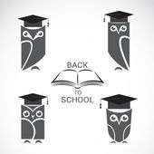 Vector image of an owl with college hat and book isolated  — Stock Vector
