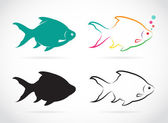 Vector group of fish — Stock Vector