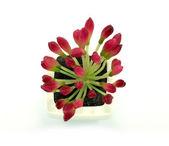 Flores rojas falsas en el jarrón — Foto de Stock