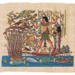 Original egyptian papyrus — Stock Photo #14154926