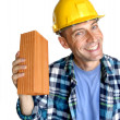 Stock Photo: Constructor and brick.