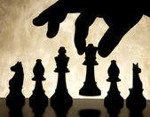Spela schackspel — Stockfoto