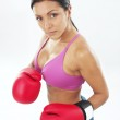 Boxing gloves woman portrait on white background. — Stock Photo #13878375