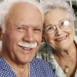 Stock Photo: Portrait of grandparents in house.