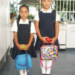 Two little sisters going to school. — Stock Photo #14397811
