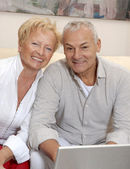 Portrait of a senior couple shopping using computer laptop. — Stock Photo