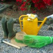 Garden tools — Stock Photo #17059807