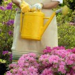 Mid adult woman gardening — Stock Photo