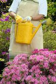 Mid adult woman gardening — Stock Photo