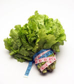 Lettuce and measuring tape — Stock Photo