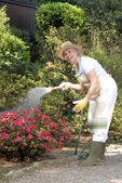 Mid adult woman gardening.Watering plants. — Stock Photo